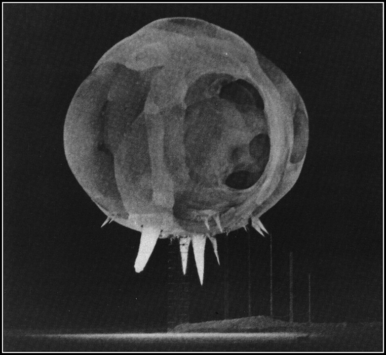 Photo by Harold Edgerton, © United States Government